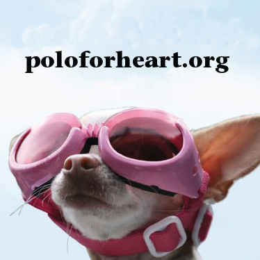 Guess Who's Going to Polo for Heart?